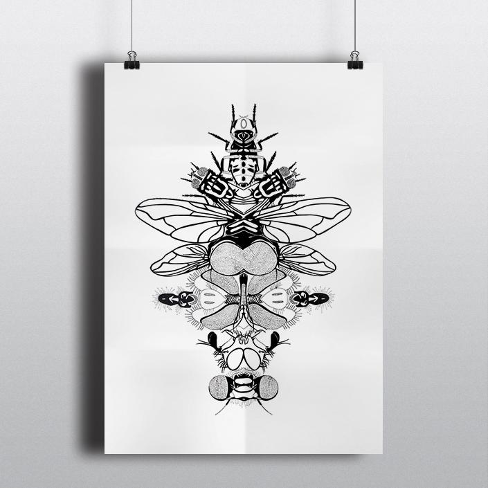 Flys • 50x60cm, Rothring sur calque